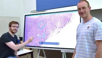 Philipp Sodmann (links) und Matthias Griebel entwickelten ein Deep-Learning-Modell, das mikroskopische Bilder auswerten kann. Quelle: Universität Würzburg